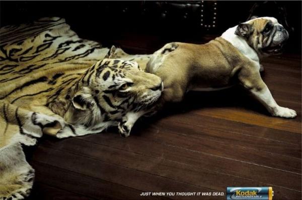 İşte en sıra dışı reklamlar 18
