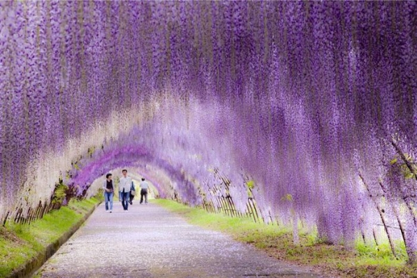 Dünyanın En Güzel Yerleri 11