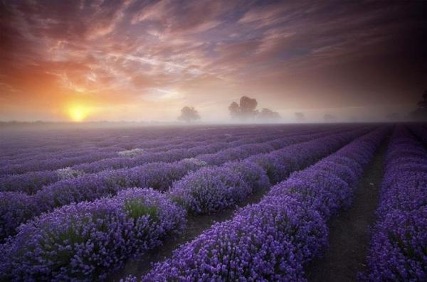 Dünyanın En Güzel Yerleri 17