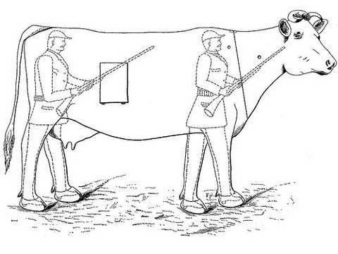 Patenti alınmış olan en garip icatlar 1