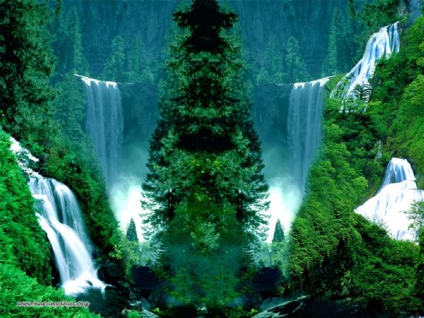Yeşilin su ile birleşen güzelliği 1