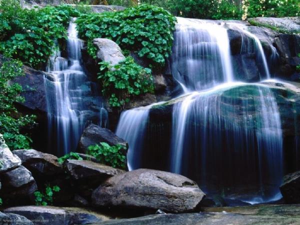 Yeşilin su ile birleşen güzelliği 13