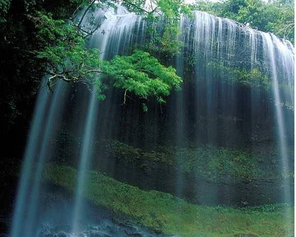 Yeşilin su ile birleşen güzelliği 4