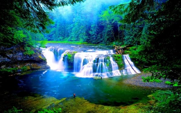 Yeşilin su ile birleşen güzelliği galerisi resim 7