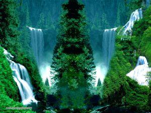 Yeşilin su ile birleşen güzelliği