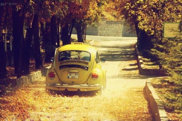 En renkli arabalar 19