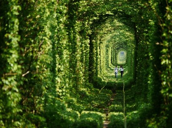 Dünyanın en güzel yolları 2