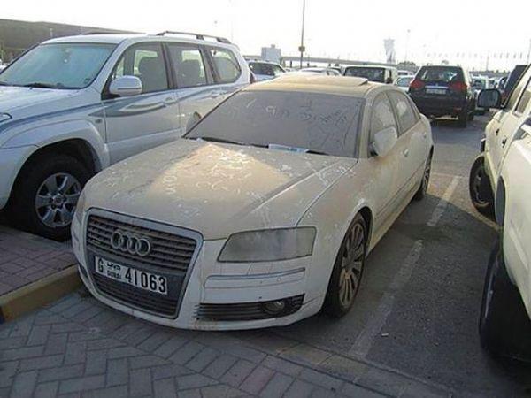 Dubai Sokaklarında İnanılmaz Manzara! 17