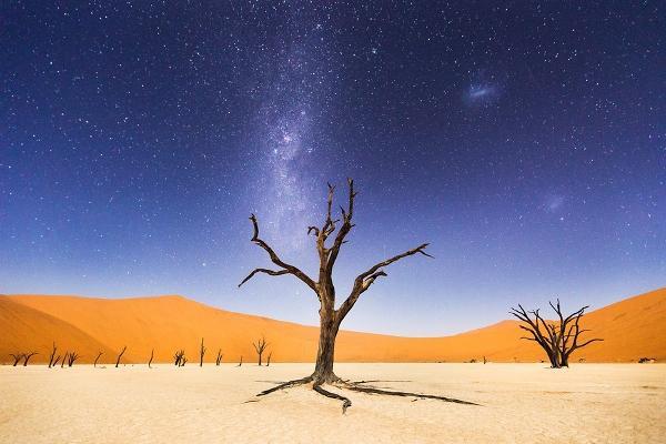 National Geographic Gezgin Fotoğrafları Yarışması'nı kazanan 10 fot galerisi resim 7