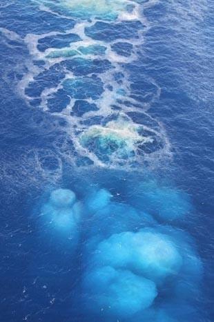 Okyanustan çıkan canavar 4