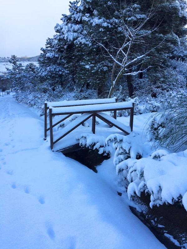 Gebze'den kar manzaraları 4