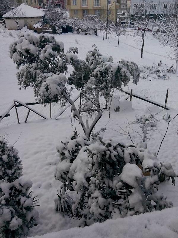 Gebze'den kar manzaraları 6