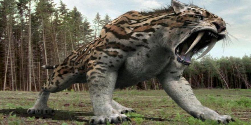 Nesli tükenmiş en vahşi hayvanlar