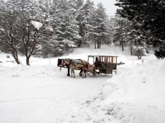 Yurttan kar manzaraları 1