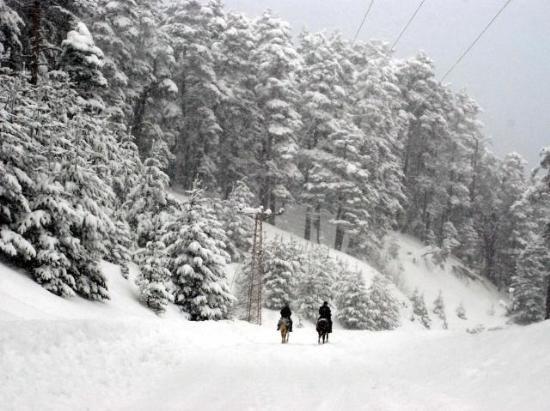Yurttan kar manzaraları 3