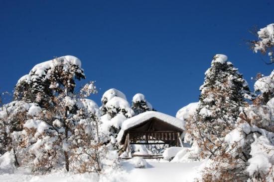 Yurttan kar manzaraları 7
