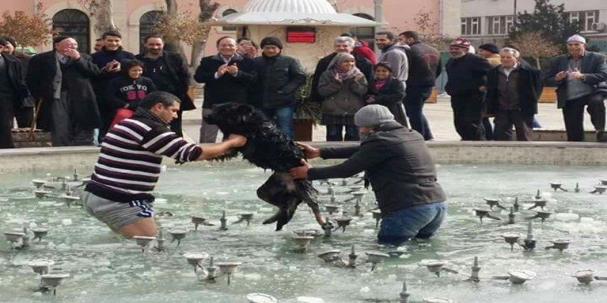 Buzda sıkışan köpeği vatandaşlar kurtardı
