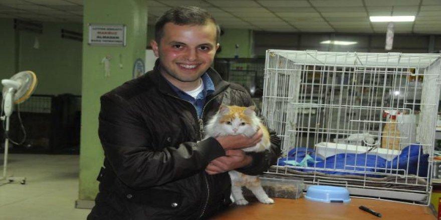 El Bab'da kurtardığı kediyi G.Antep'te ziyaret etti