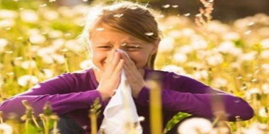 Bahar alerjisi en çok İstanbul'u etkiliyor