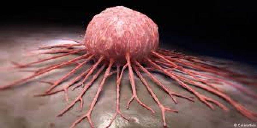 Kanserde erken tanı hayat kurtarıyor