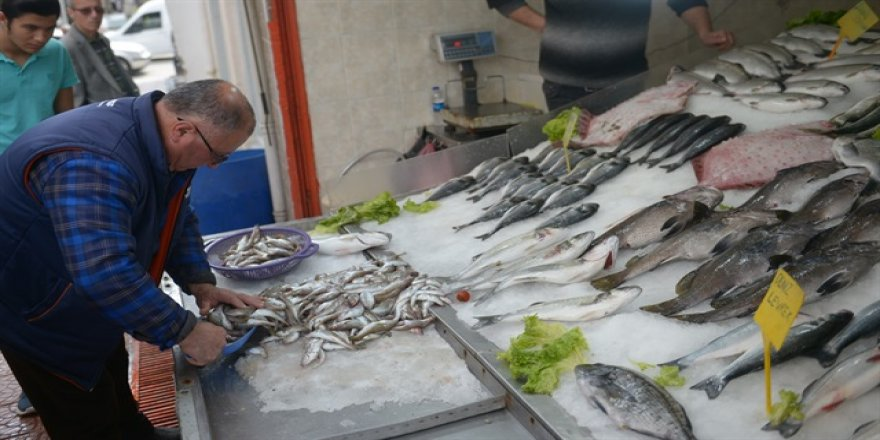 Av yasağı başladı balık zamlandı