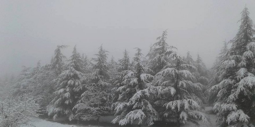 Kütahya'da kar sürprizi