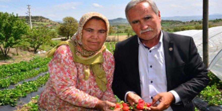 3 çiftçi, bir ilçenin kaderini değiştirdi! Göç edenler geri dönüyor