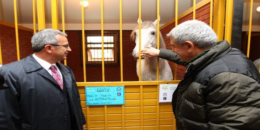 Başkanlar Atlı BinicilikMerkezini inceledi