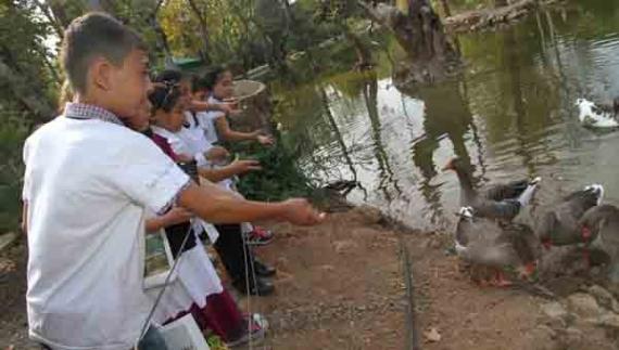 Öğrenciler nesli tükenen hayvanları tanıdı!