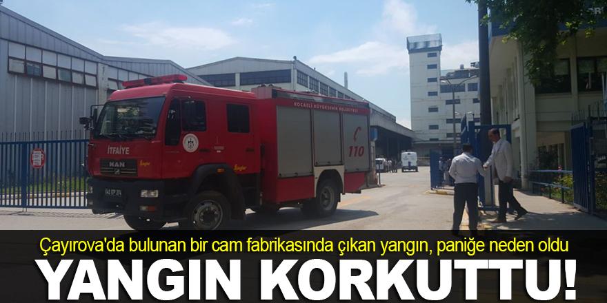 Cam fabrikasında çıkan yangın korkuttu