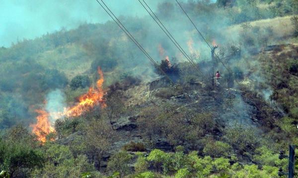 Bilecik'te orman yangını!