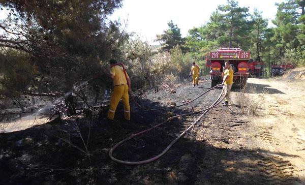 Keşan'da 4 hektar alan kül oldu!