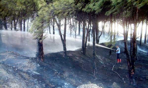 Burhaniye'da korkunç yangın!