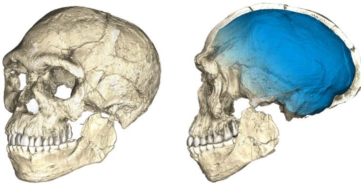 Yeni keşif: İnsanlığın tarihi 100 bin yıl 'geri attı'