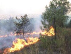 Gaziler Dağı'nda yangın çıktı!