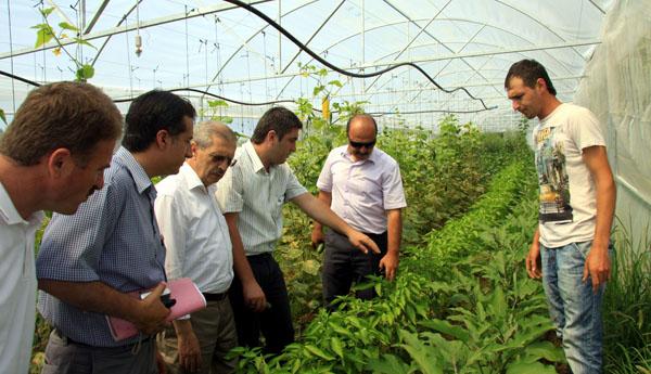 Büyükşehir'in tarım çalışmaları sonuç verdi!