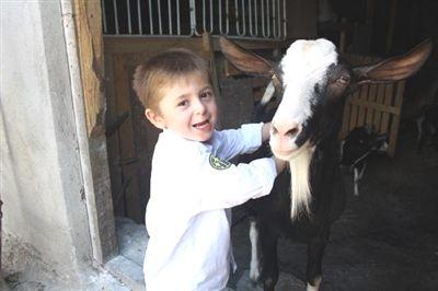 Bu köyde keçi beslemek yasak!