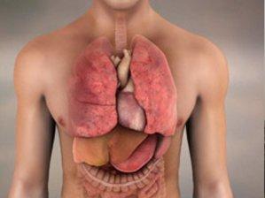 Karaciğer nakli bekleyenlere müjde!