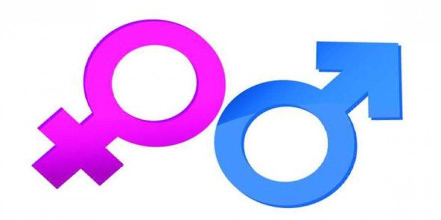Cinsiyet değiştirmek kolaylaşıyor