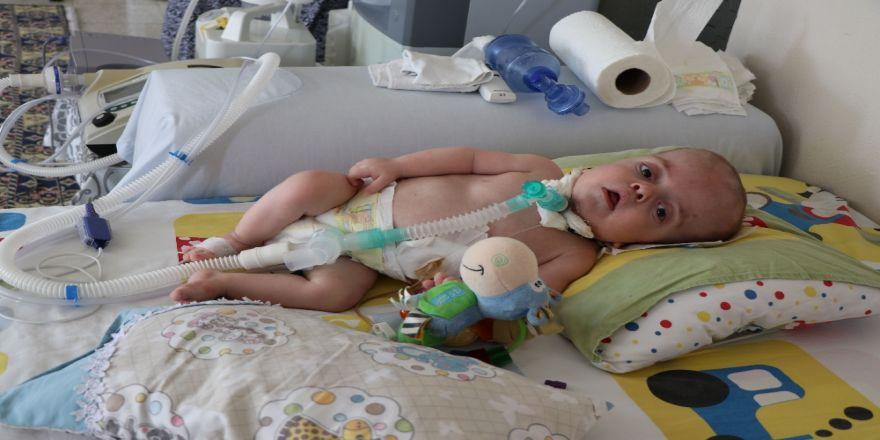 Hastalığının teşhisi konulamayan bebek, 4 makineye bağlı