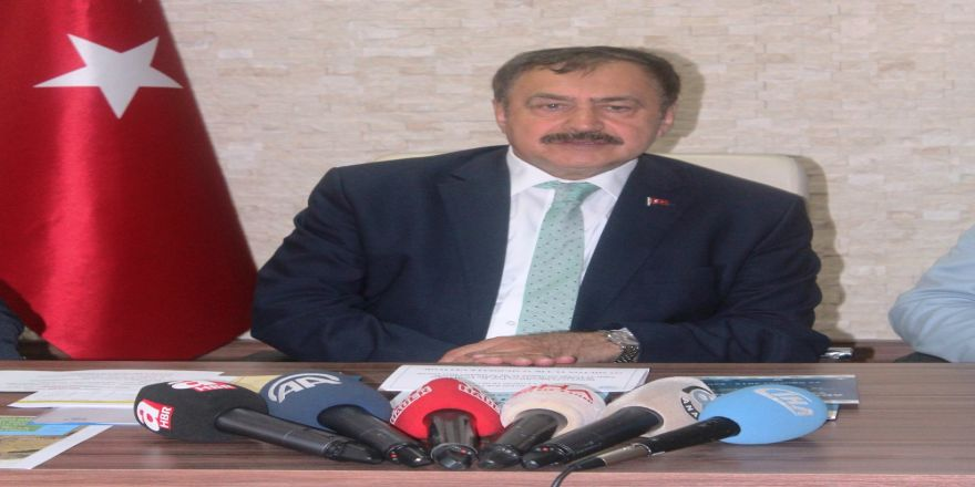 Bakan Eroğlu Ayvalık'taki Yangında Sabotaj İhtimalini Açıkladı