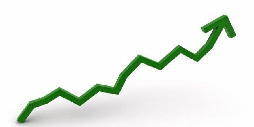 Finansal Kesim Dışı Firmaların Döviz Pozisyon Açığı Arttı