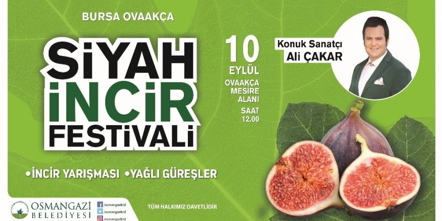 Osmangazi'de Siyah İncir Festivali