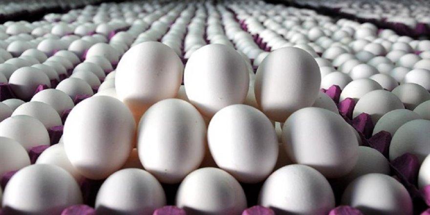 İyi yumurta nasıl anlaşılır?