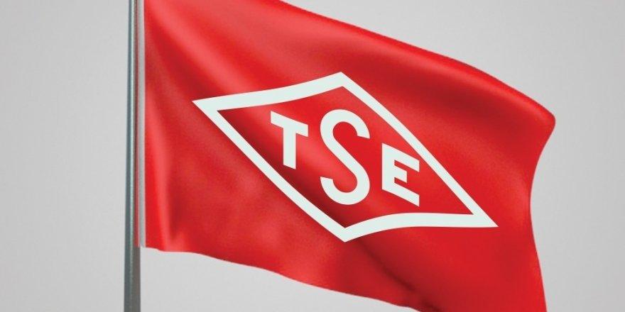 TSE, Kocaeli'de personel alacak