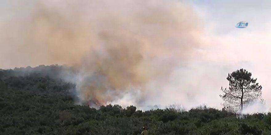 Askeri Kışla İçerisindeki Ormanlık Alanda Yangın