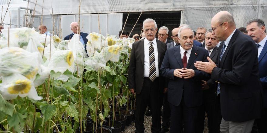 En Verimli Tohumlar Bursa'da Üretiliyor