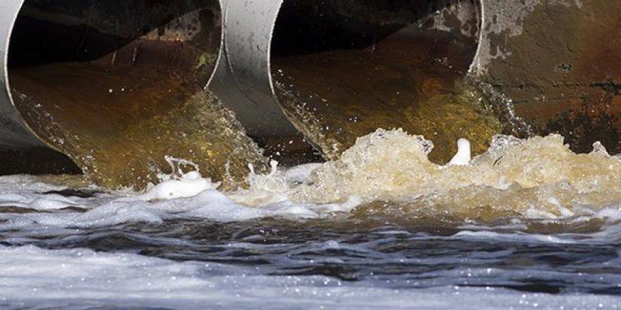İsviçreliler kanalizasyonda 'altın madeni' buldu