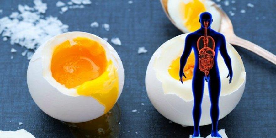 Güne iki yumurta ile başlamanın inanılmaz 7 faydası!