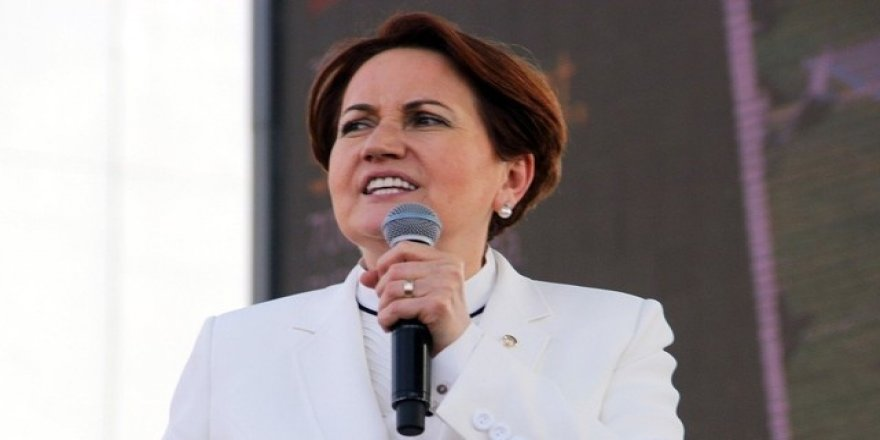 Meral Akşener'in partisine sürpriz aday